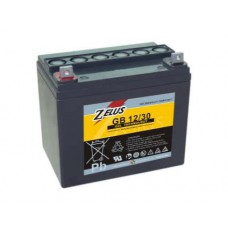 Аккумулятор тяговый Zelus GB12-30
