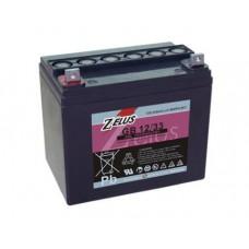 Аккумулятор тяговый Zelus GBS12-33